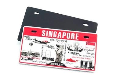 souvenir license plate magnet
