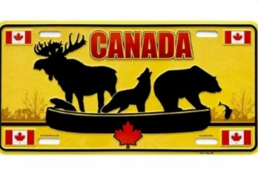 20 - Promotional License Plate manufacturer and supplier in China