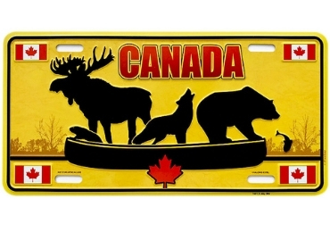 Printed License Plate manufacturer and supplier in China