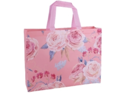1- Non-Woven Bag manufacturer and supplier in China