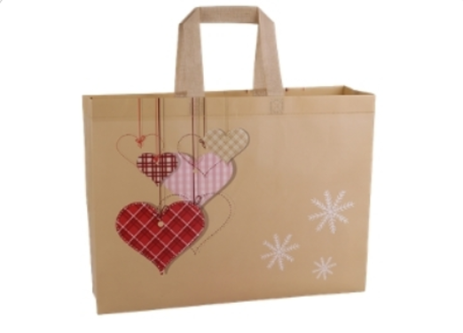 13- High Quality Non-Woven Bag manufacturer and supplier in China