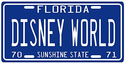 8- Florida Souvenir License Plate manufacturer and supplier in China