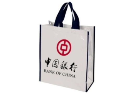 9- Custom Non-Woven Bag manufacturer and supplier in China