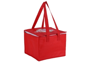 Eco-friendly Cooler Bag manufacturer and supplier in China