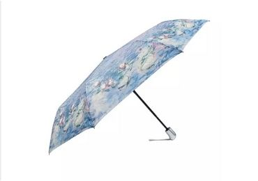 Famous Painting Umbrella manufacturer and supplier in China