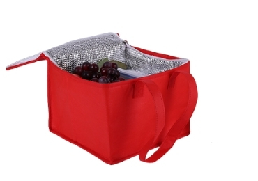 Fashion Cooler Bag manufacturer and supplier in China