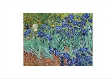 Irises Placemat manufacturer and supplier in China
