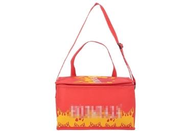 Washable Cooler Bag manufacturer and supplier in China