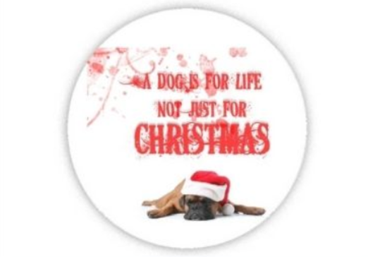 22 - Christmas Acrylic Coaster manufacturer and supplier in China