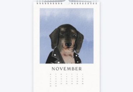 44 - Pet Lover Gift Calendar manufacturer and supplier in China