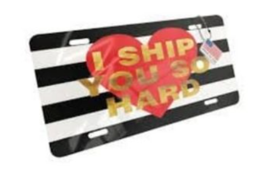 6 - Girl Gift License Plate manufacturer and supplier in China
