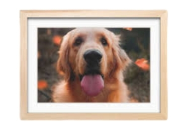 Pets Photo Frame manufacturer and supplier in China