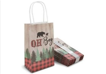 Printed Paper Bag manufacturer and supplier in China