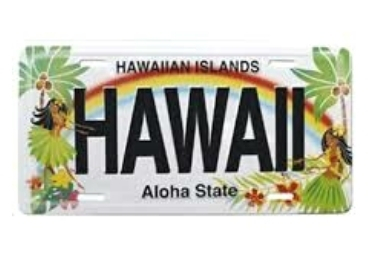 Beach Souvenir License Plate manufacturer and supplier in China