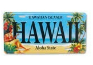 Hawaii Souvenir License Plate manufacturer and supplier in China