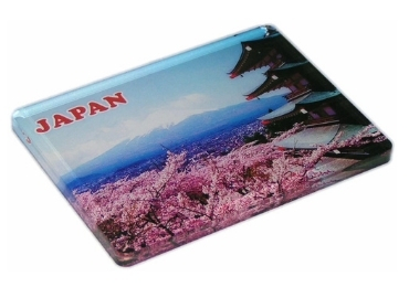 Souvenir Acrylic Magnet manufacturer and supplier in China