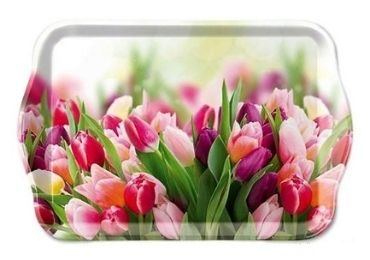 custom Netherlands Souvenir Tray wholesale manufacturer and supplier in China