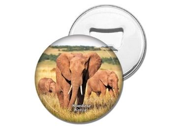 custom Africa Souvenir Bottle Opener wholesale manufacturer and supplier in China