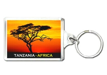 custom Tanzania Souvenir Acrylic Keychain wholesale manufacturer and supplier in China